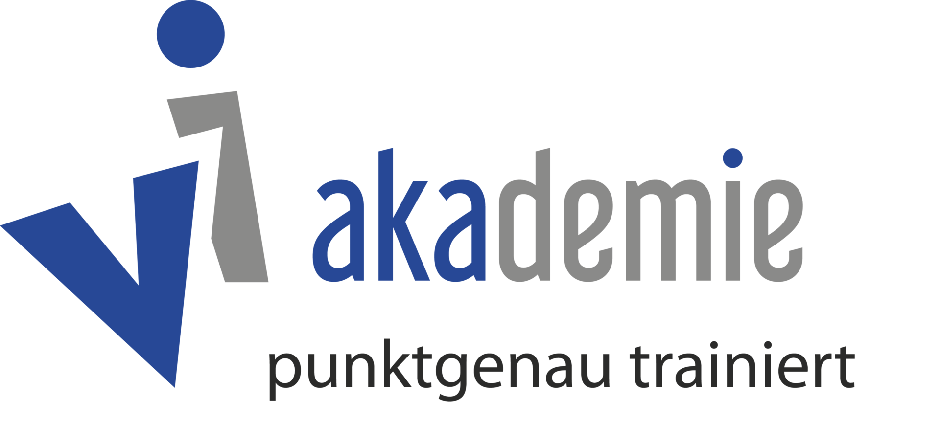 vi-akademie